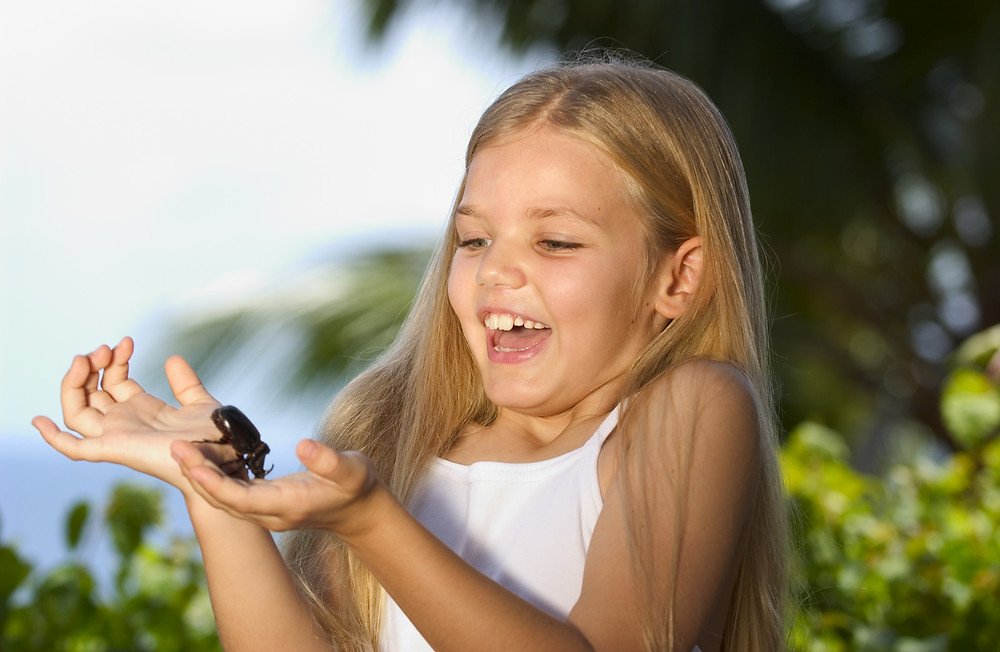 Girl holding Fregate Beetle at Fregate Island Private