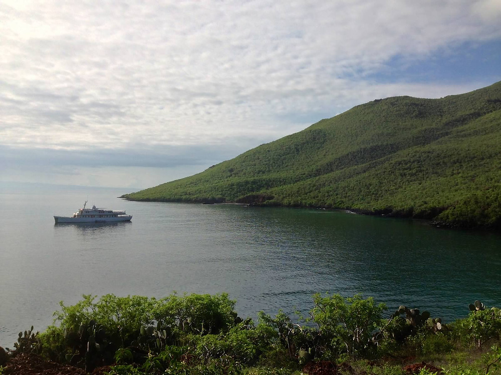 The M/Y Grace from Quasar Expeditions in the Galapagos Islands.