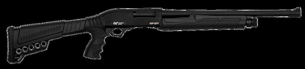 GForce GF2P