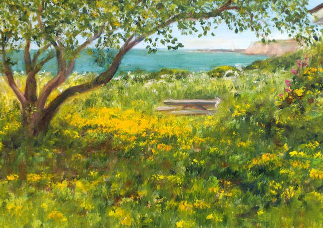 """Coastal Trail Garden"" - Half Moon Bay"