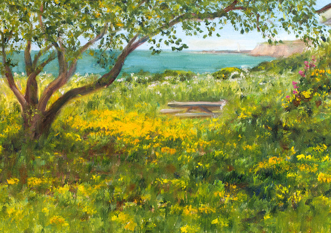 """Coastal Trail Garden"" - Half Moon Bay"