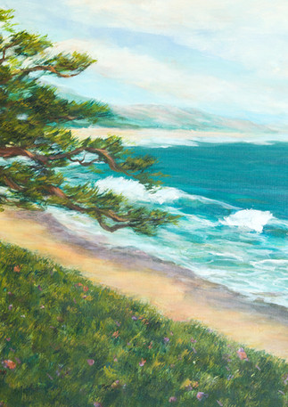 """Miramar Cypress"" - Half Moon Bay"