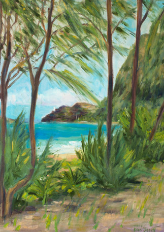 """""""Waimanalo Ironwoods"""" - Waimanalo, Oahu, Hawaii"""