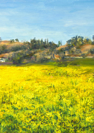 """Gracie's Field"" - Half Moon Bay"