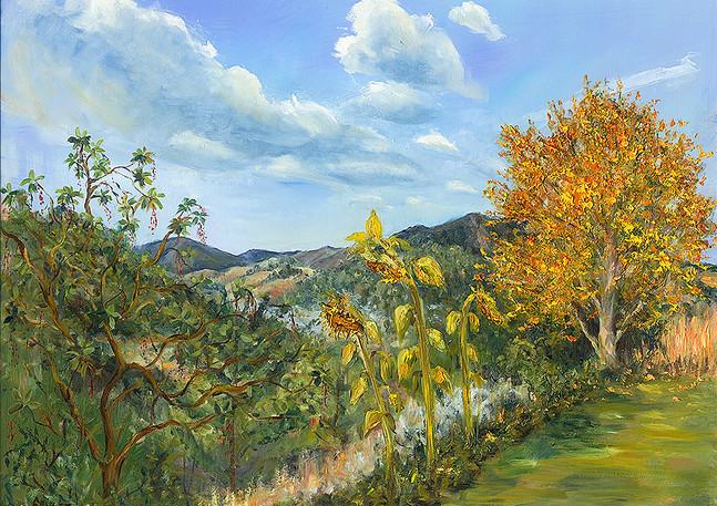 """""""Terra Linda Hills"""" - Marin, CA"""