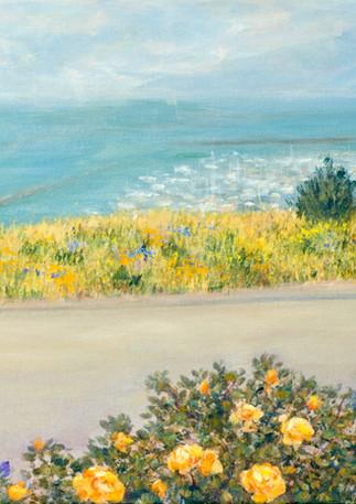 """Pillar Point Garden"" - Half Moon Bay"