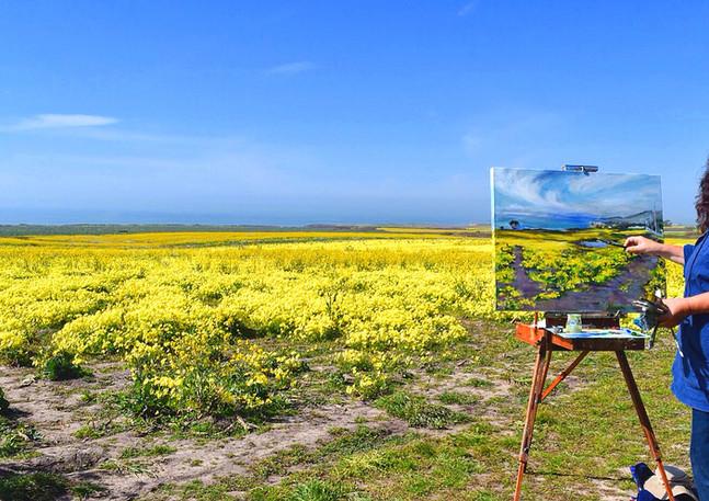 """""""Cowel Ranch Mustard"""" - Half Moon Bay"""