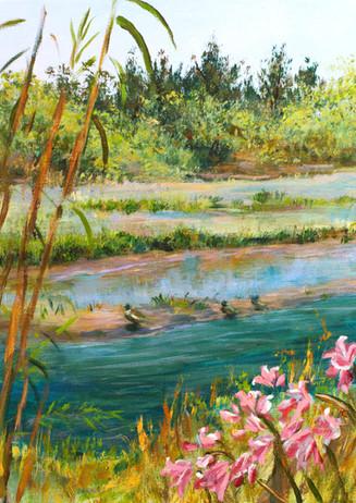 """""""Russian River Ducks"""" - Healdsburg, CA"""