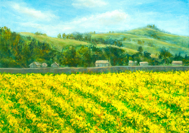 """Frenchmen's Creek Mustard"" - Half Moon Bay"