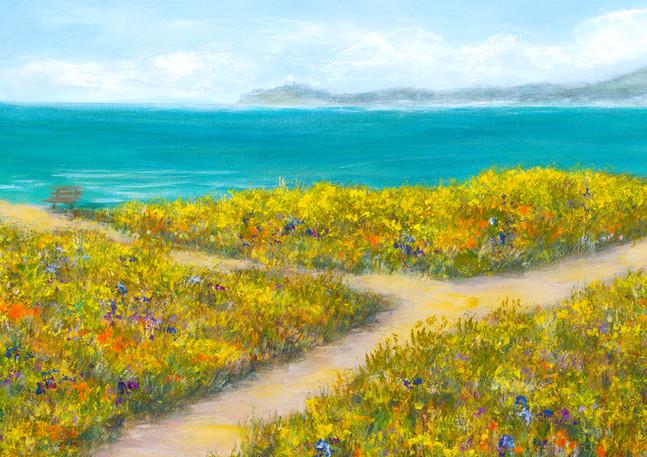 """Coastal Trail"" - Half Moon Bay"