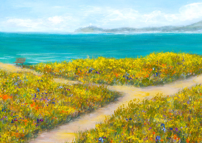 """Coastal Trail"" - Half Moon Bay"