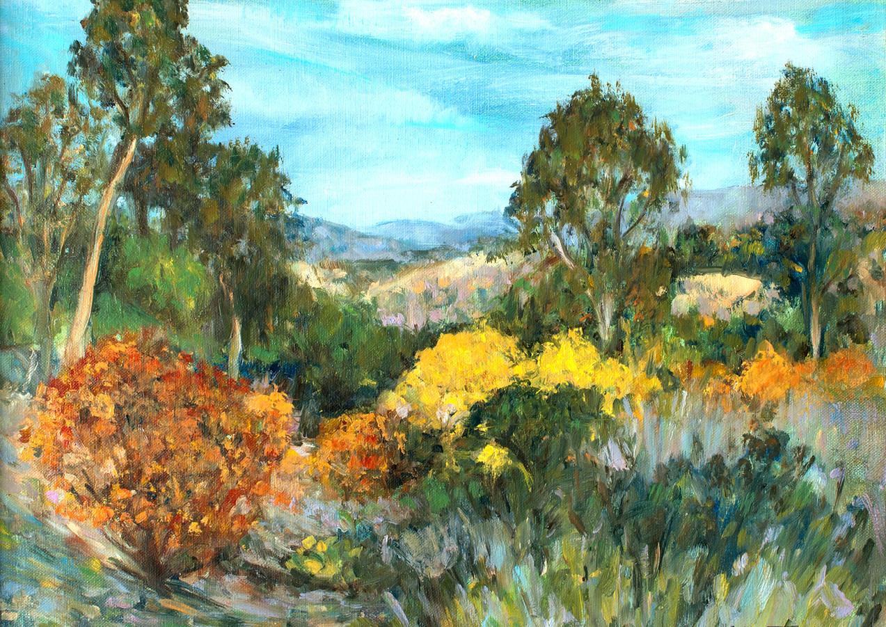 """""""San Diegito Autumn"""" - Encinitas, CA"""