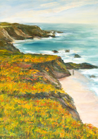 """Captains Landing Bluffs"" - Pescadero"