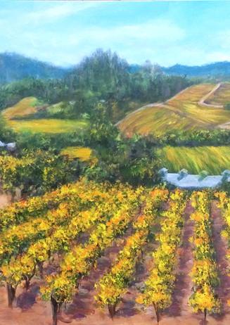 """Cast Winery"" Healdsburg, CA"