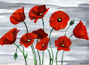 Poppies in Acrylic
