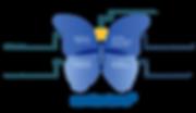 contexture-Schmetterling_DE_freigestellt