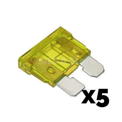 Fusibles Standard 20A - 30A