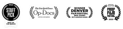 PalliativeFilmAwards