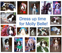 dress-up-time-for-molly-belle_2973870859