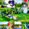 Op een bankje aan de Kromme Rijn...