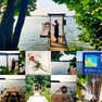 Meest idyllische picknick bank ever (Flevoland)!