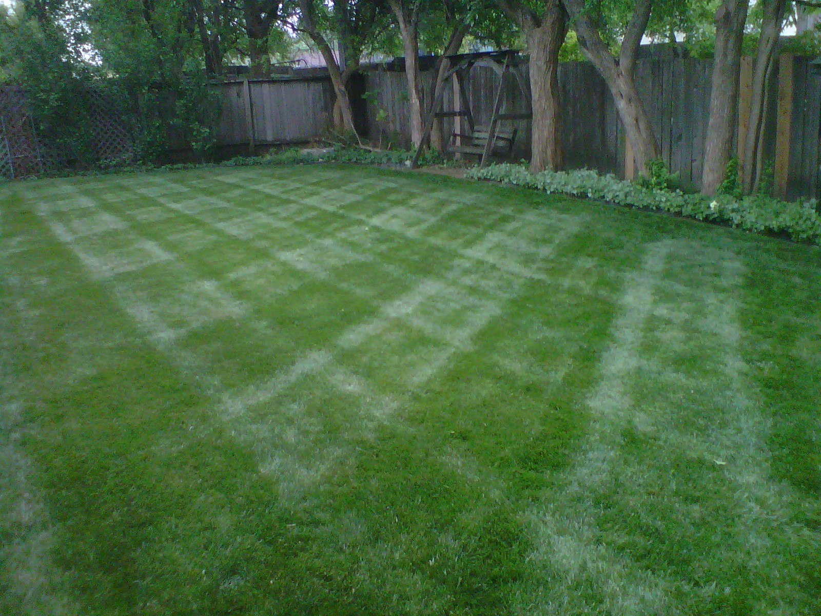 Yard Stripes