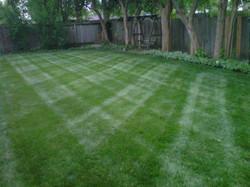 Lawn Stripes 3