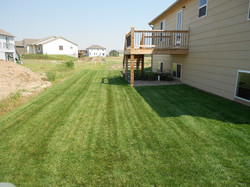 New Lawns
