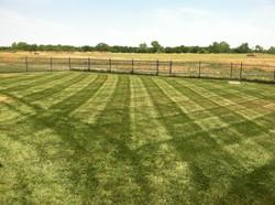 Lawn Stripes 11
