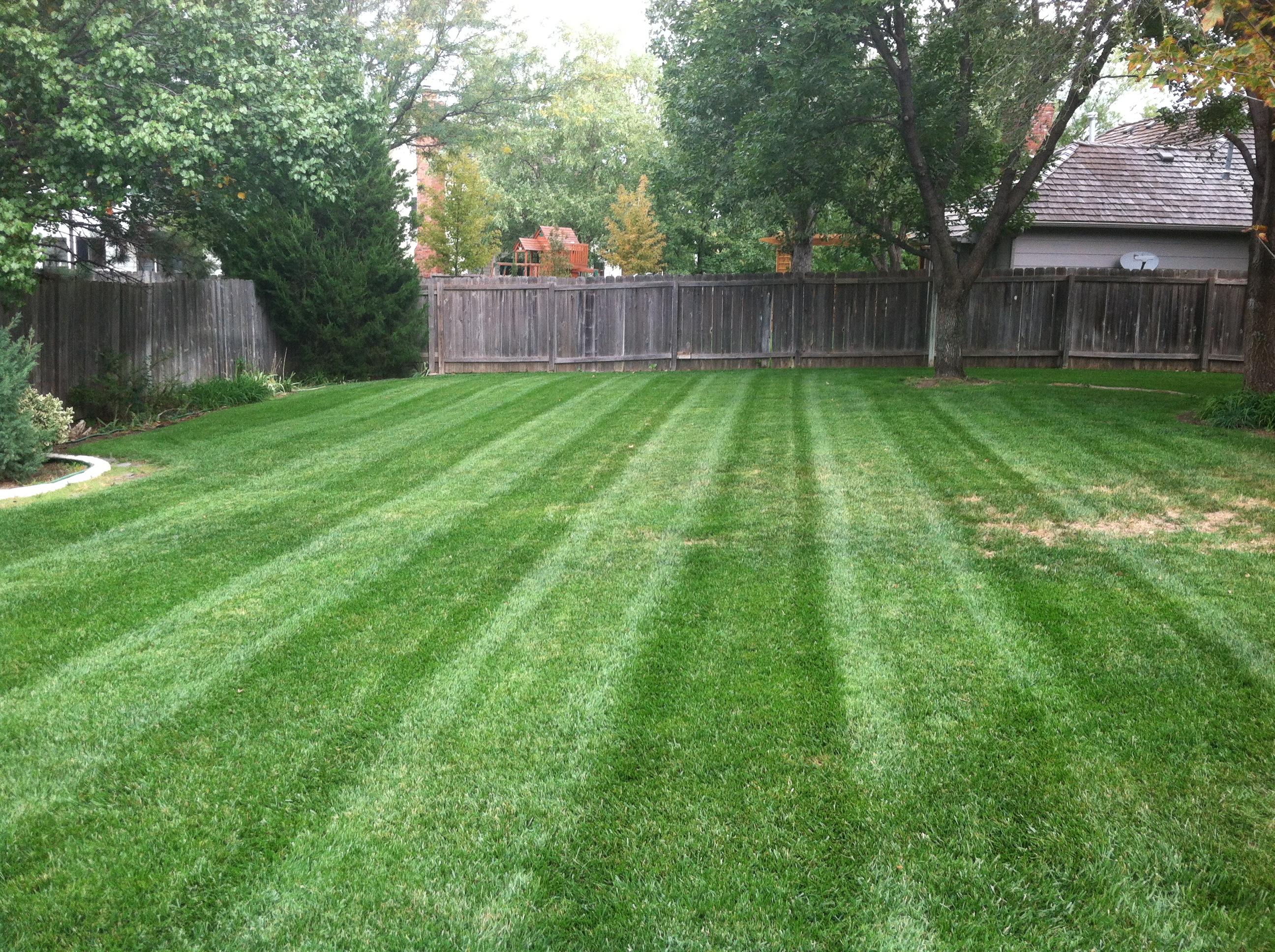 Lawn Stripes 6