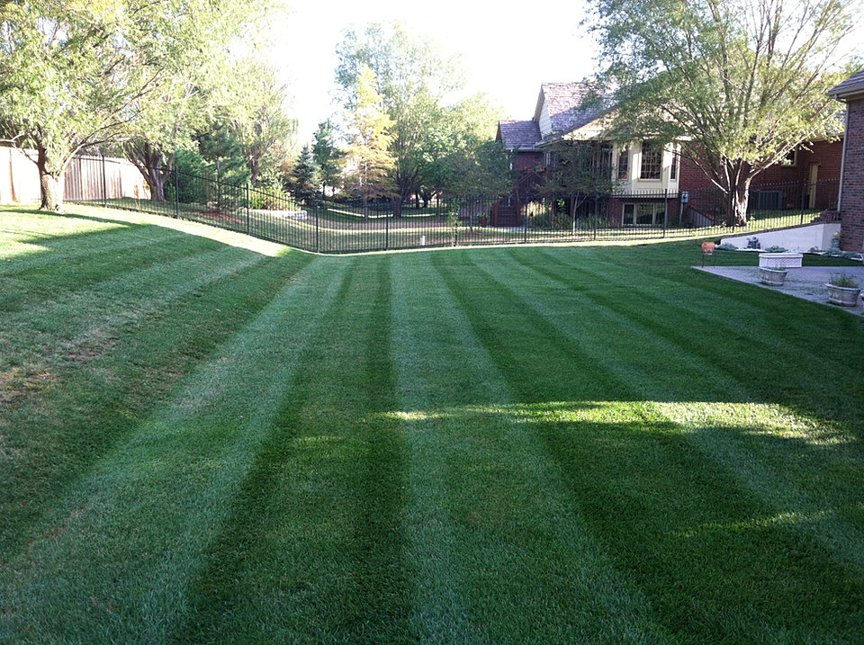 The Yard Barber Lawn Care Service And Mowing Service In