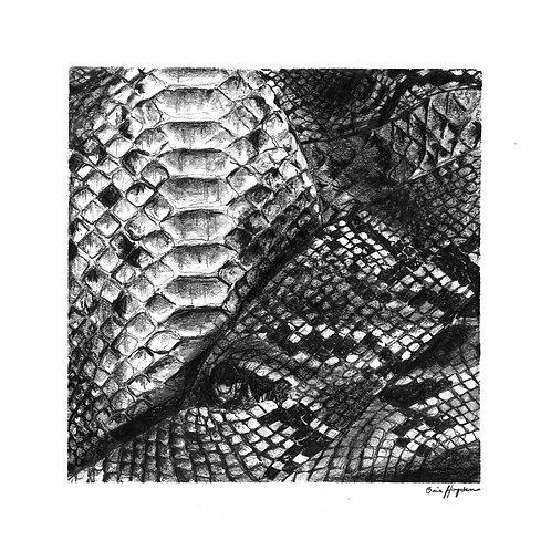 Snakeskin Print