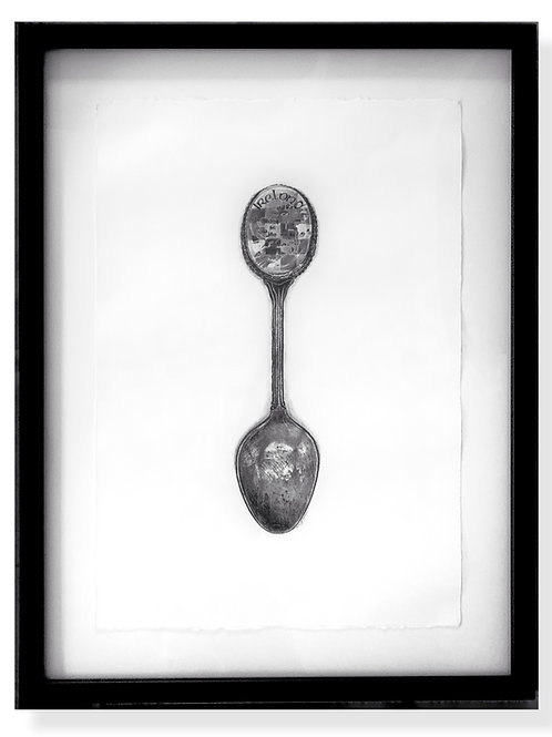 Ireland Spoon