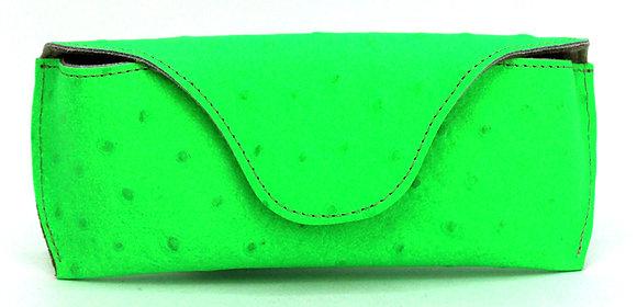 Glass Case Green