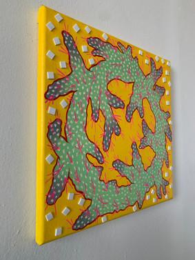 Infiniti Loop Cactus