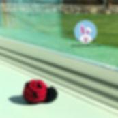 ladybugfree.jpg