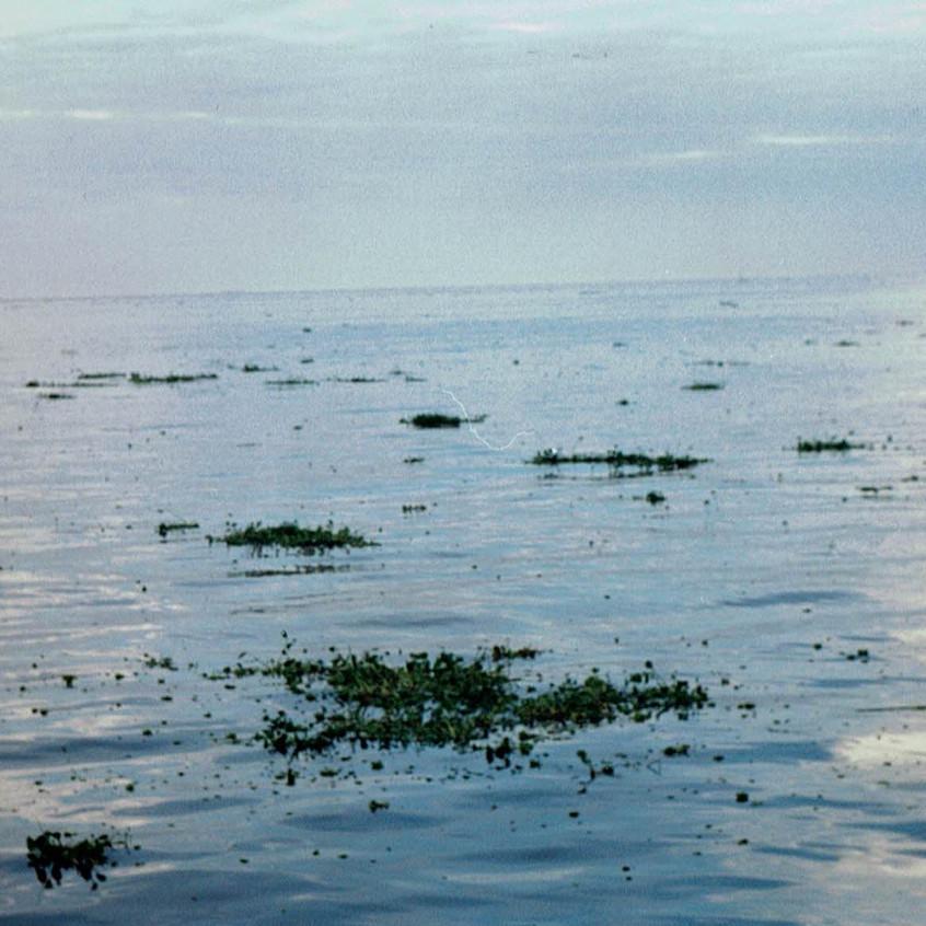 Desembocadura del Río de la Plata.