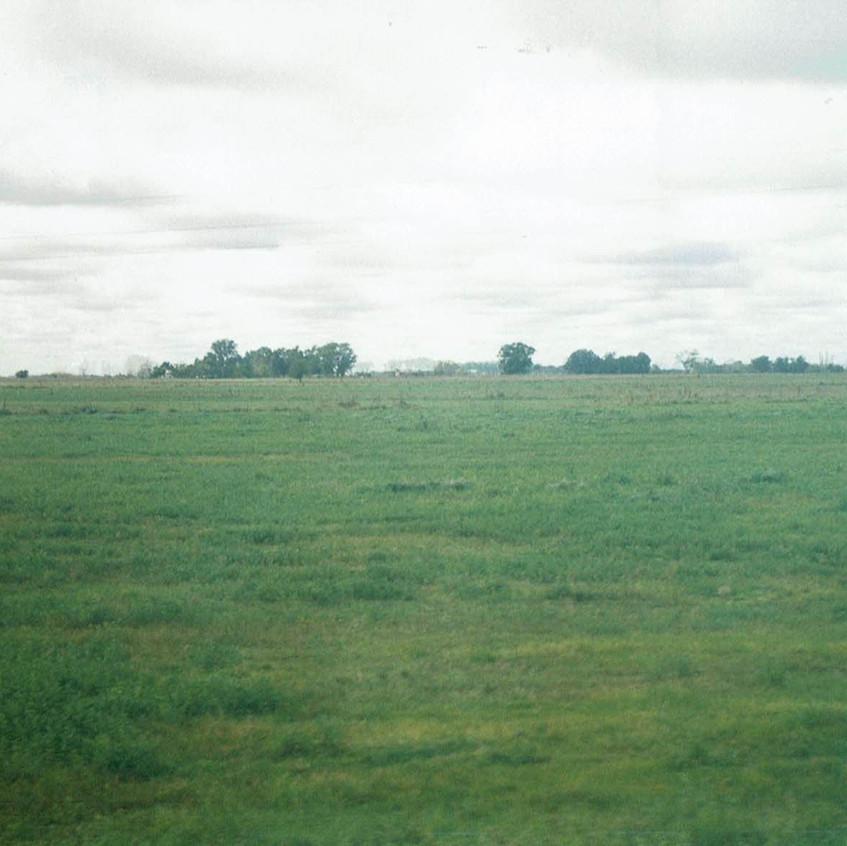 Prados verdes de la Pampa.
