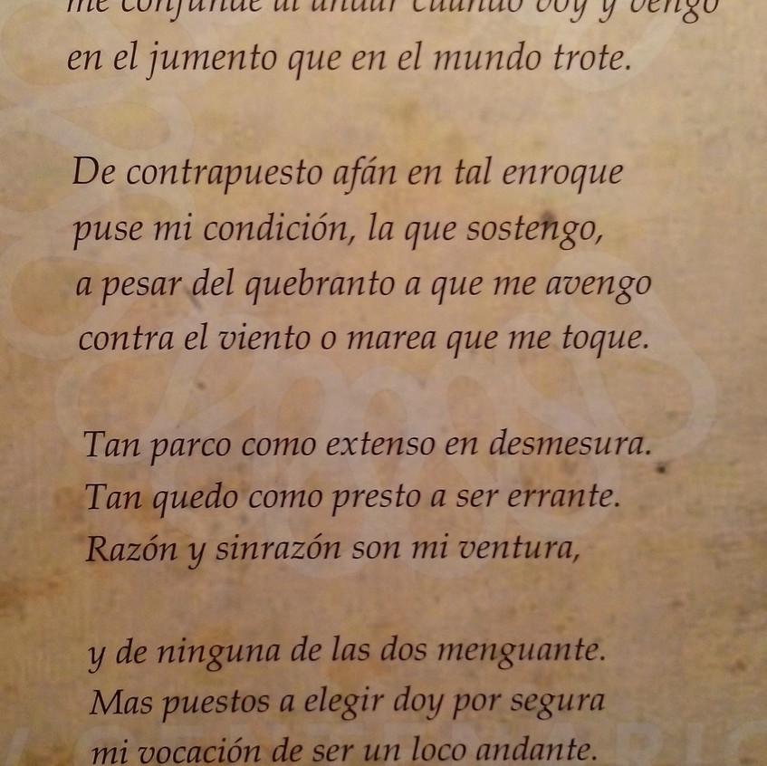 Cervantes. Ciencia en el Quijote 15