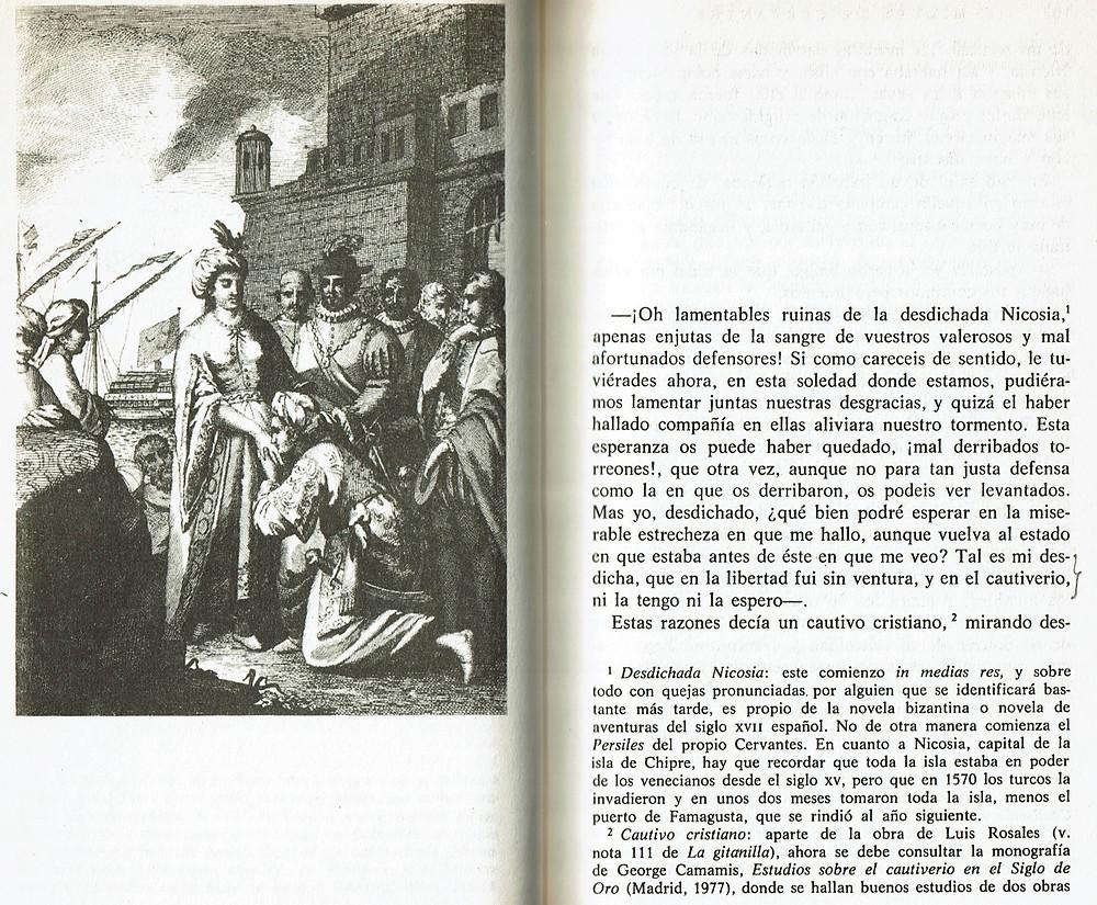El amante liberal. Edición de Avalle-Arce. Editorial Castalia.