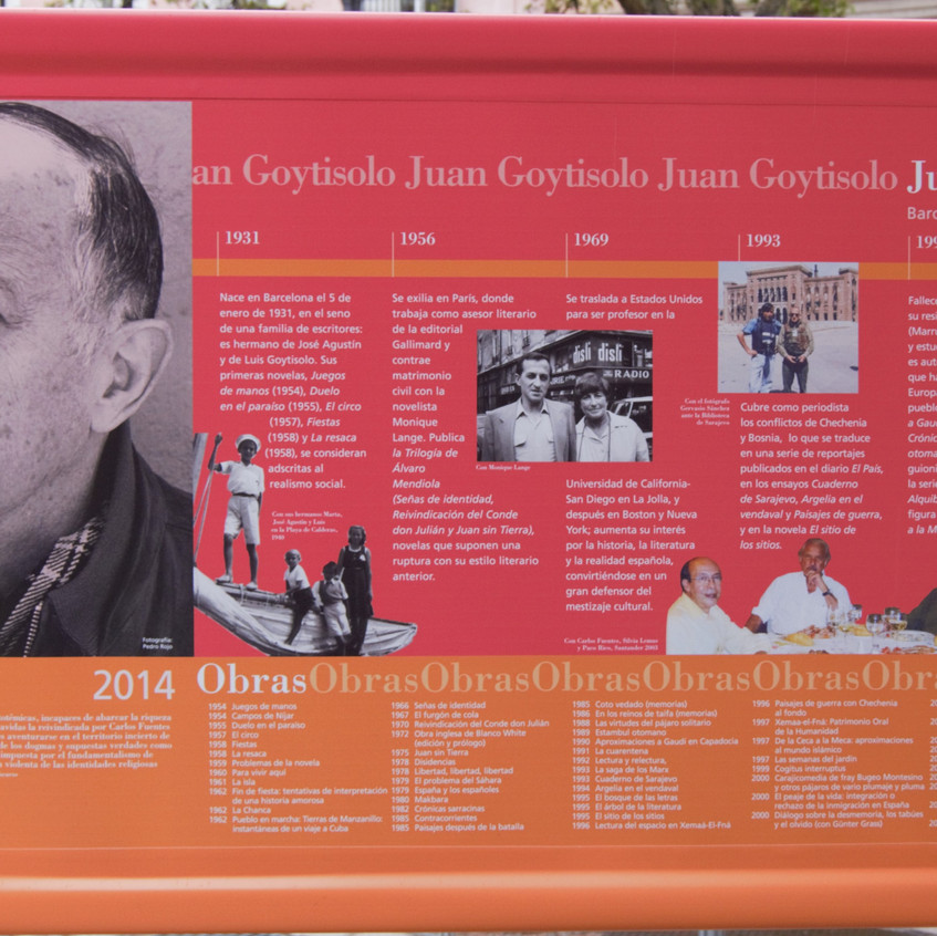 Z.12 Juan Goitysolo 2014