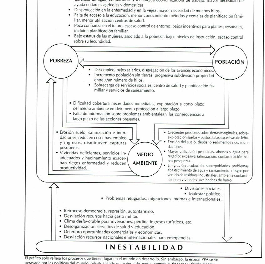 D. Artículo José Mª Callejas 25