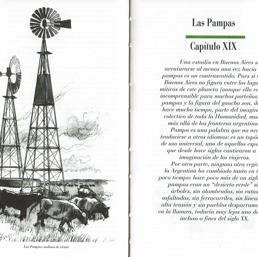 Las Pampas: molinos de viento.