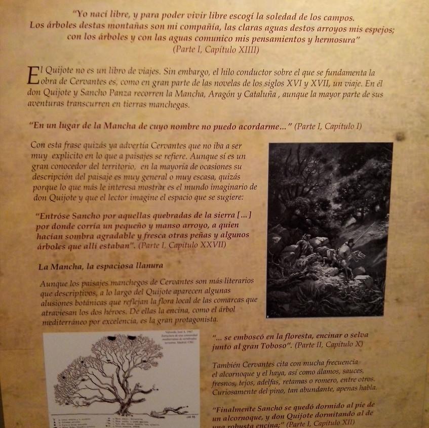 Cervantes. Ciencia en el Quijote 7