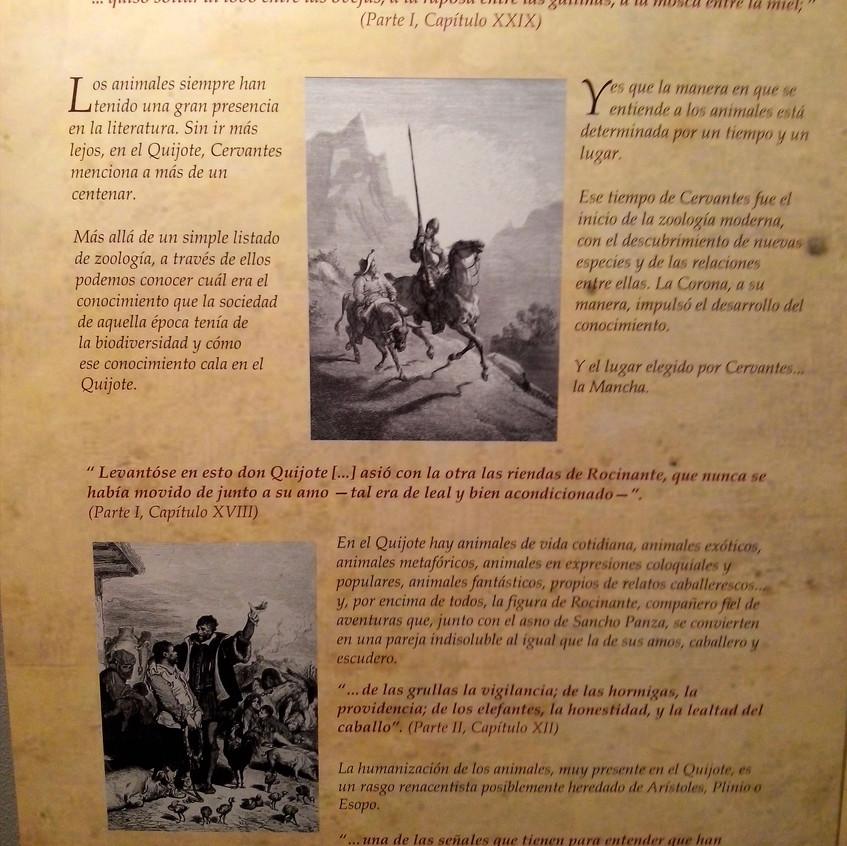 Cervantes. Ciencia en el Quijote 13