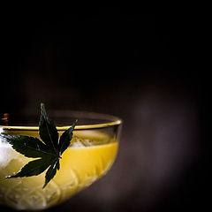 drink_heco_2_13.jpg