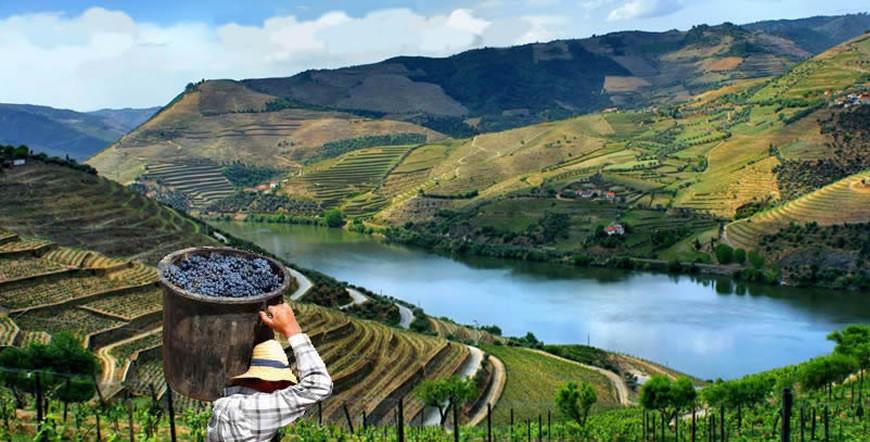 Traversée en bateau et dégustation de Porto sur le Douro - Voyage à Porto Blog