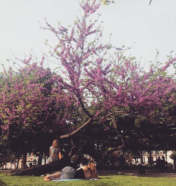 Jardin - Voyage a Lisbonne