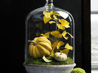 Happy Hour : Fall Cloches