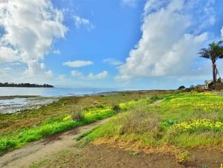 Places We Go : Alameda Beach House